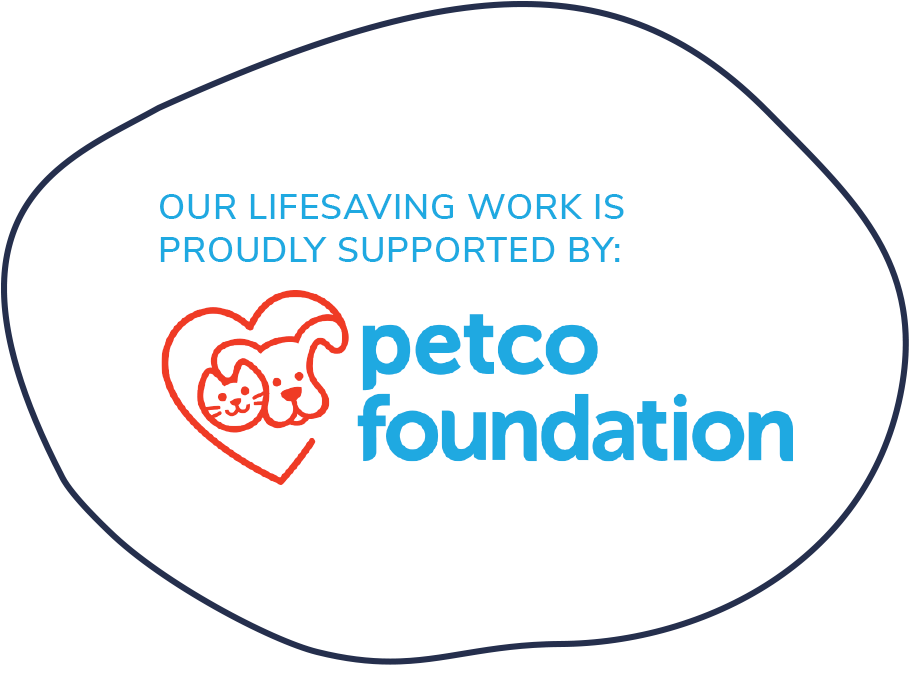 PetCo Foundation Badge